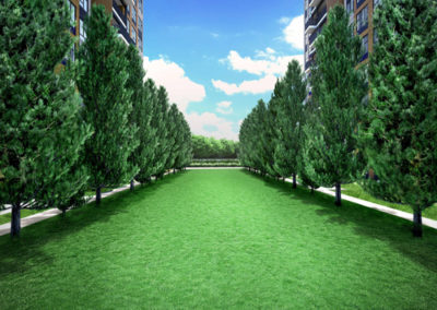 lawn-vista